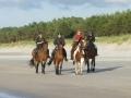 Letnia szkoła jazdy konnej w Kopalinie