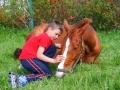 Układanie koni