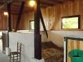 pensjonat dla koni