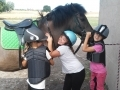 Wakacje z końmi