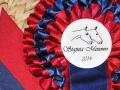 Konkurs o kolorowe flo 28.06.2014