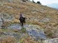Filmowy rajd konny po Gruzji - wracamy do 2012