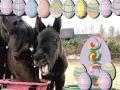 Wielkanocne zdziwienie